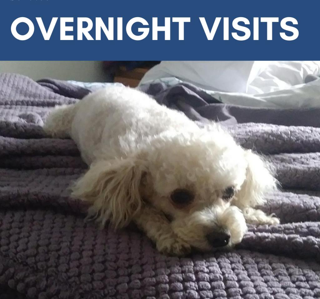 overnight visits